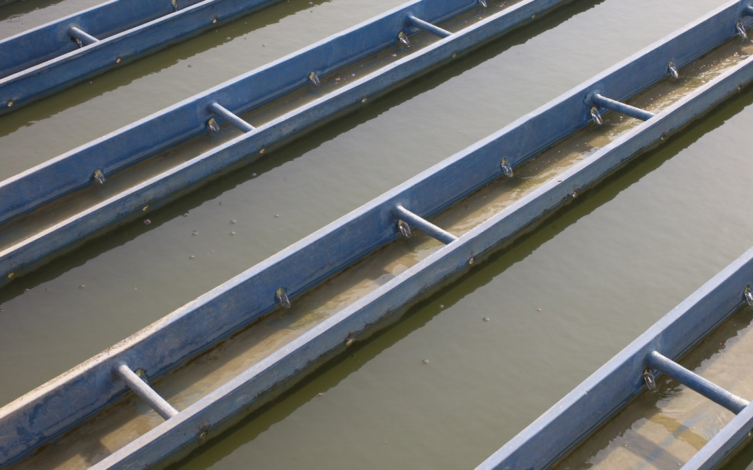 Featured by Water Online: New Wastewater Project In California Sports The Latest Conservation Tech