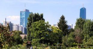 Rendkívüli költségvetést fogadott el Bécs, hogy fákat ültessen