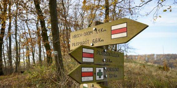 Turistajelzéseket újítottak meg a Pilismaróti Erdészet területén