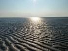 Das Weltnaturerbe Wattenmeer