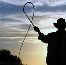 whip_cattleman