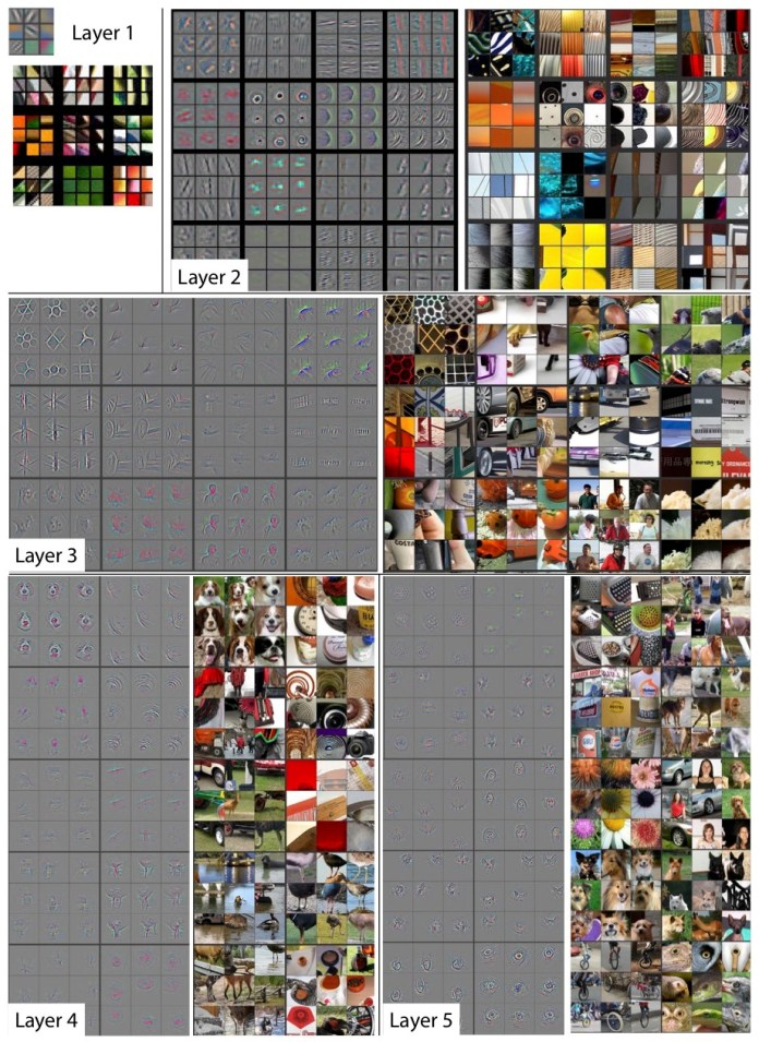 neural networks layers visualization