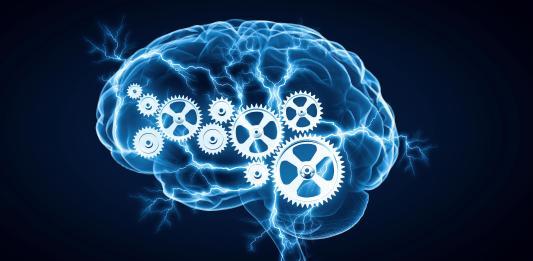 human brain gears