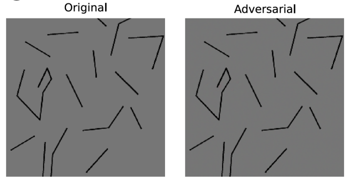 contour adversarial example