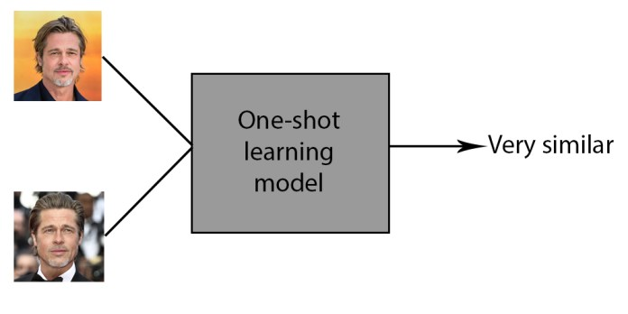 one-shot learning
