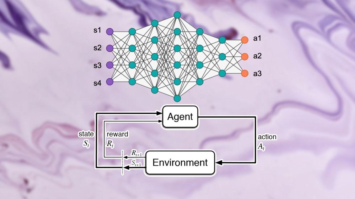 Demystifying deep reinforcement learning – TechTalks
