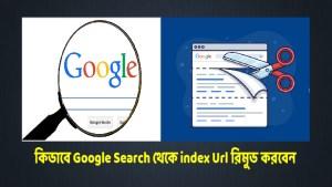Google Search থেকে index Url রিমুভ
