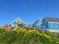 De blauwe lucht met de bloemen en geverfde huizen zetten een pracht beeld op ons netvlies.