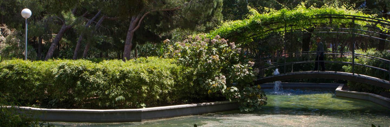 Delve into the vegetation of Parc de la Pegaso