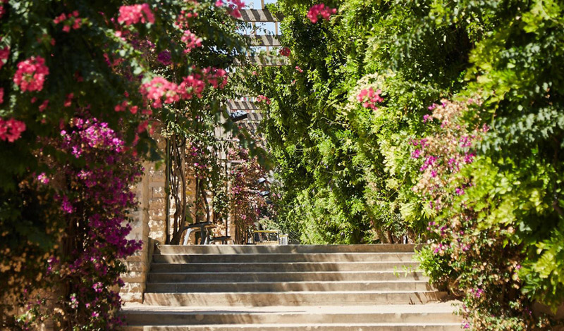 Jardín parque Joan Miró en Sants