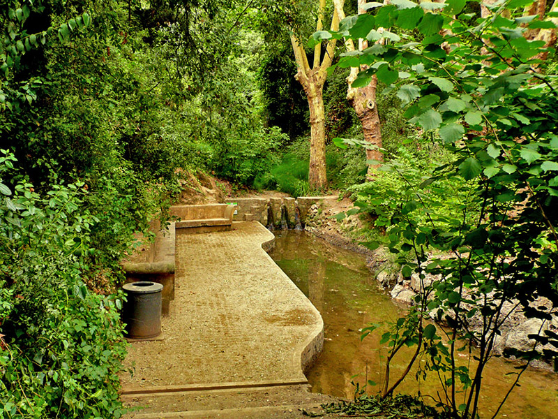 Parc de Collserola cerca de pisos de alquiler Sant Just Desvern BeCorp