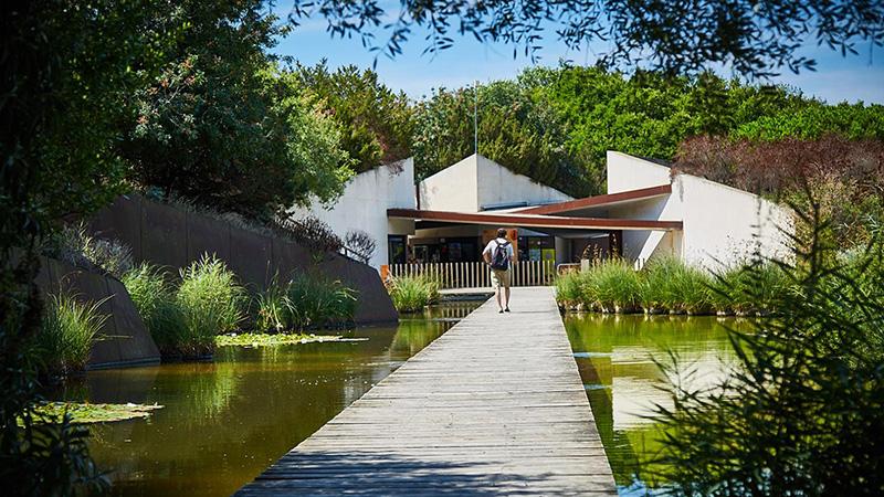 Jardín Botánico de Barcelona, cerca de pisos de alquiler BeCorp en Sants