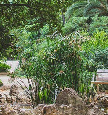 6 parcs de Badalona on prendre l'aire