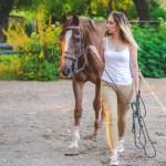 Horse Tack And Equipment A Primer
