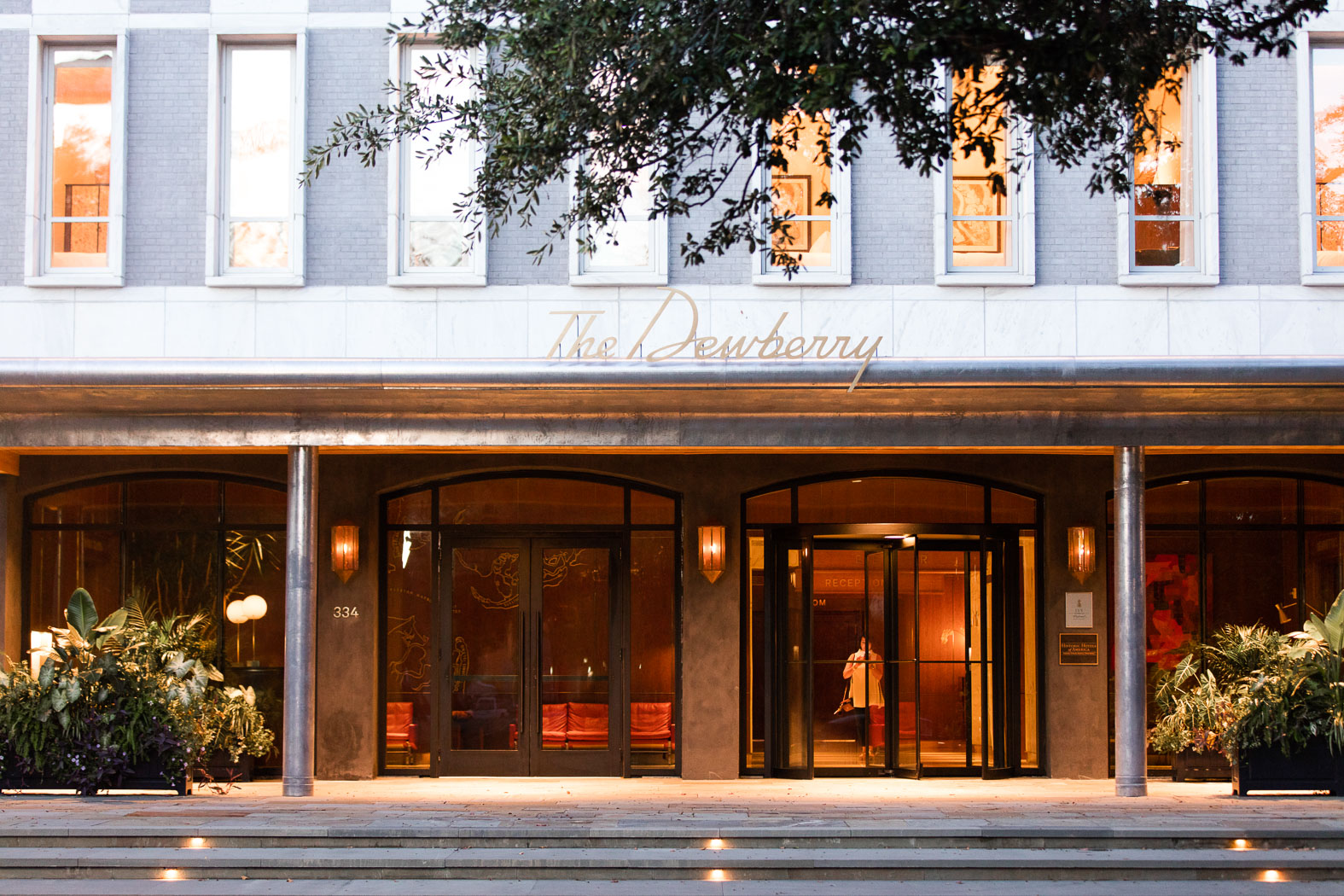 Image result for pics of the Dewberry