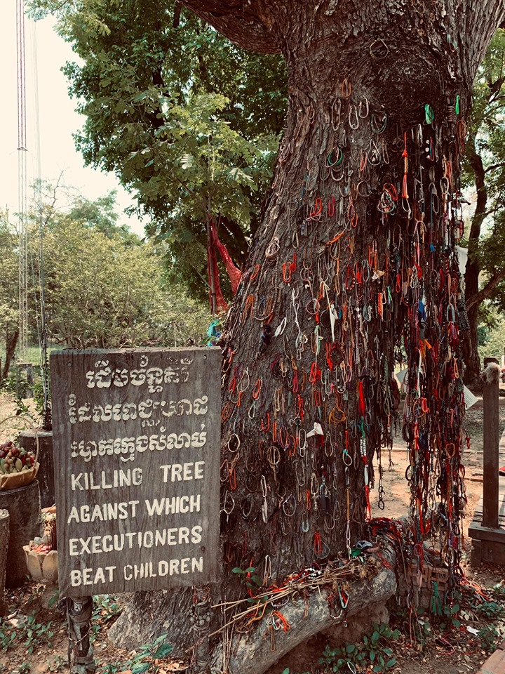 The killing tree against which babies were swung is now adorned by bracelet and heartfelt messages left by tourists and loved ones