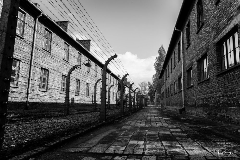 Photo of barracks in Auschwitz I divided by barb wire