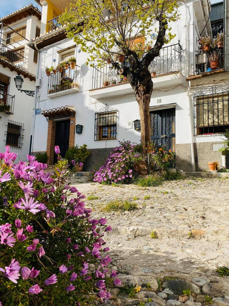 Photo of a picturesque house surrounded by beautiful flowers in Granada
