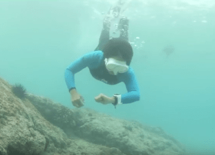 dive computer best of 2016
