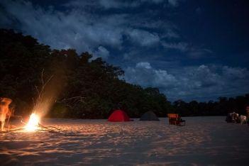 beaches of the amazon