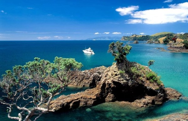 Paradise City Waiheke Island New Zealand