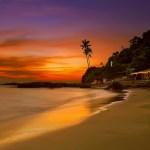 Techno Paradise? Goa, India