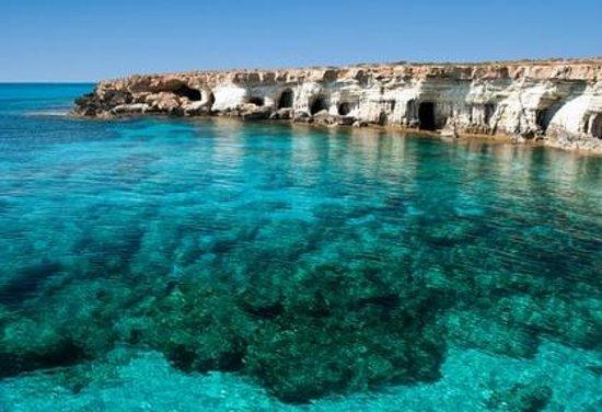 coral-bay-divers