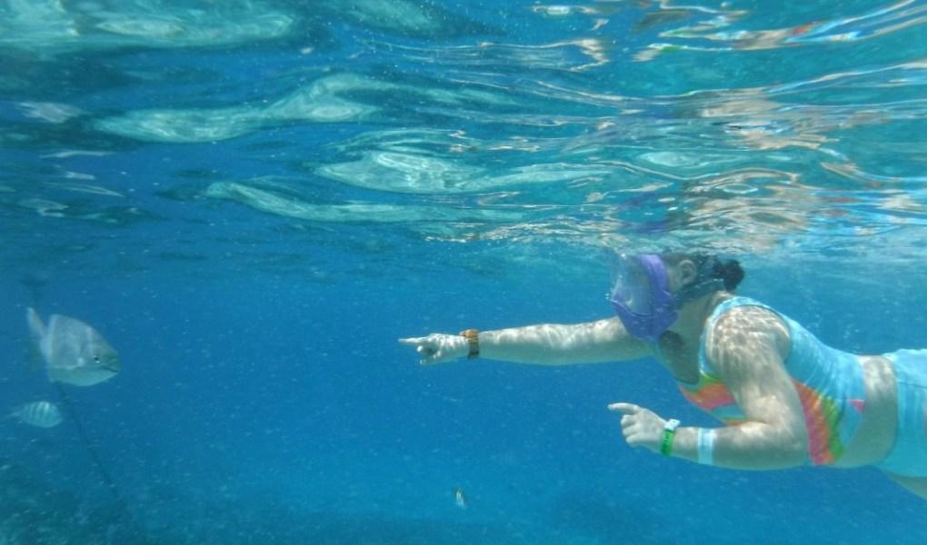 easy snorkel full face mask