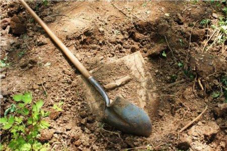buried treasure usa