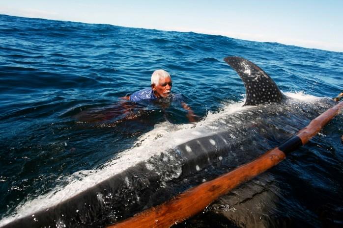 lamaleran whale hunting