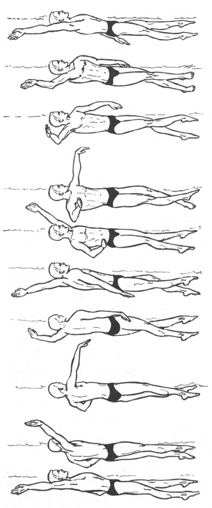 Backstroke-cycle-pull-through-and-recovery-of-the-right-arm-Used-with-permission-from