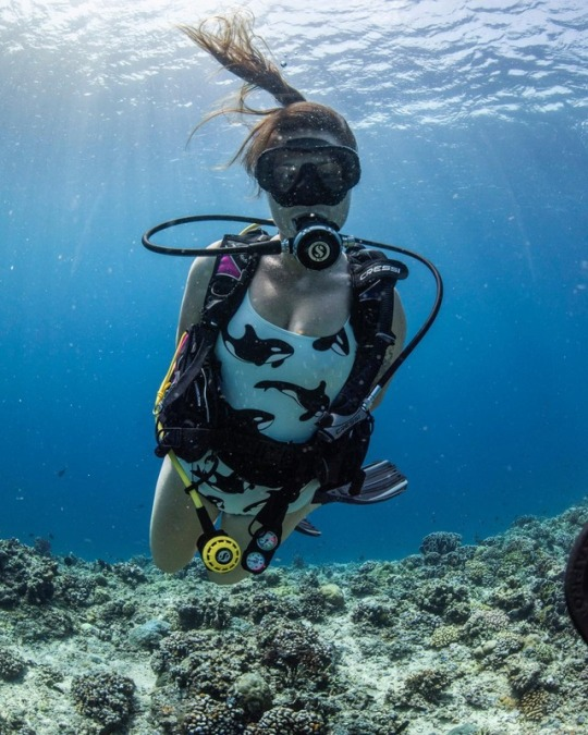 scuba diving in bathing suit