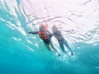 Picture of Cheap Snorkelling Trips in Gulhi