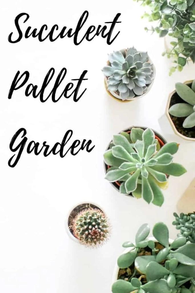 Succulent Pallet Garden DIY Project