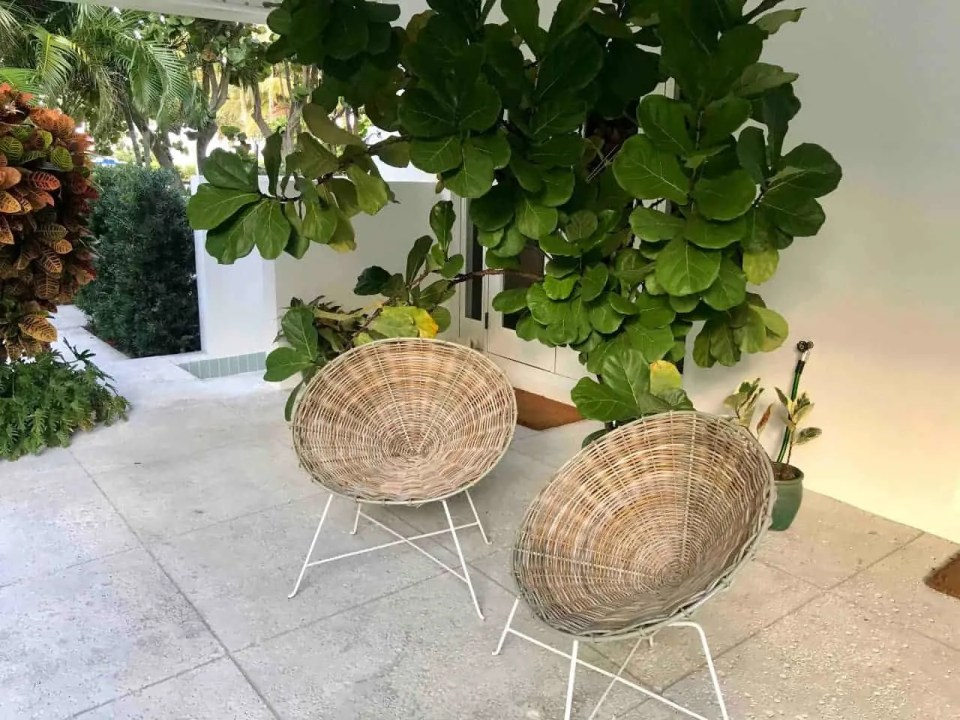 Bohemian Elegant Luxury Paradise AirBnb Beach House Decor - outdoor wicker circle chairs