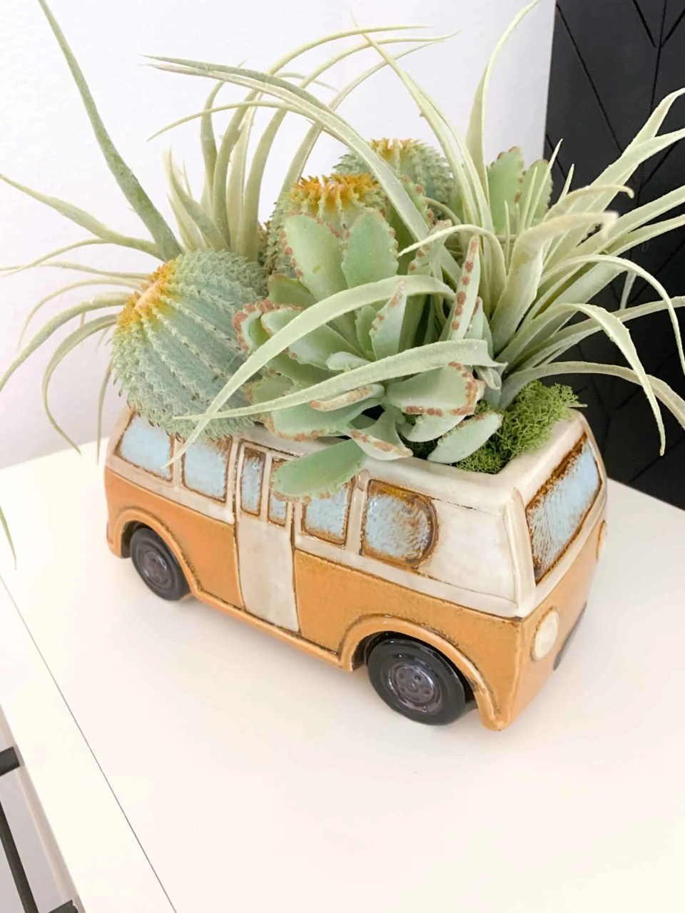 Car shaped planter for succulents in boys bedroom