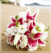 Aloha Beach Maui Wedding Planners & Specialist ~ Al-A-Carte Options