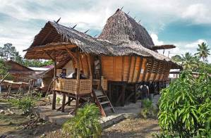 Charming Traditional House from Lolofaoso Village, Nias Island, Indonesia