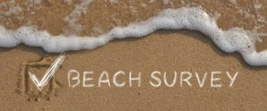 Beach Survey with check mark