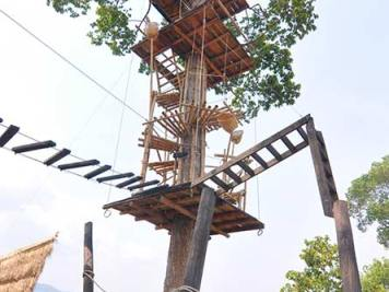 Spiral stairway up a tree leading to zipline platform, Kampot, Cambodia.