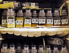 bereg-bottles