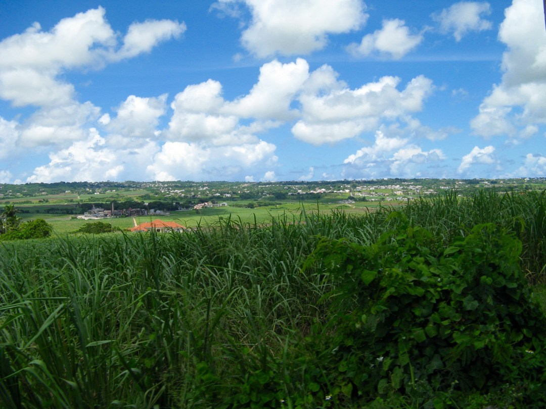 The Sky over Barbados Country side