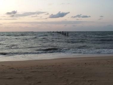 Va Beach First Landing State Park (29)