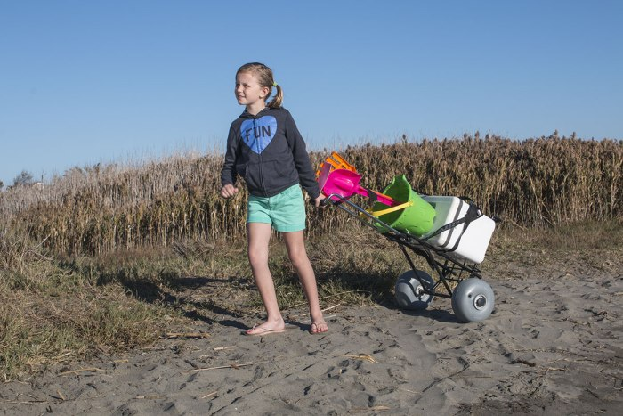 Beach Cart Folding-Mini