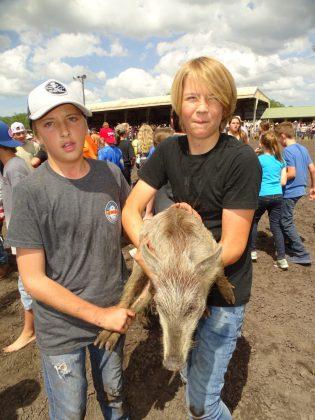 <p><p>As a bonus, if you catch a pig, you get to keep it</p></p><p></p>