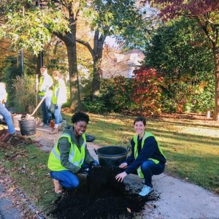 Trees Atlanta 2018 planting 3