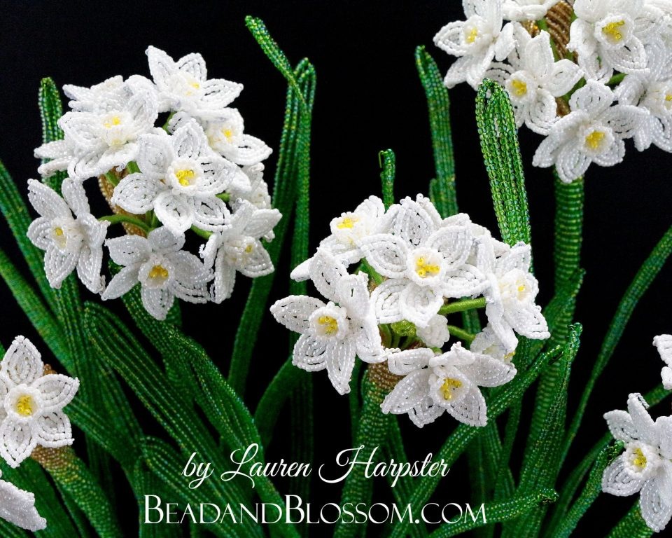 French Beaded Paperwhites by Lauren Harpster