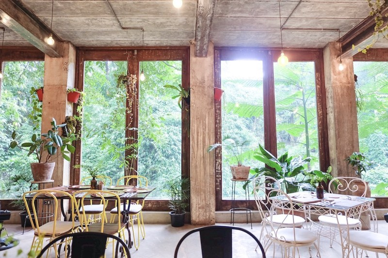 the windows overlooking the forest in burrow cafe antipolo