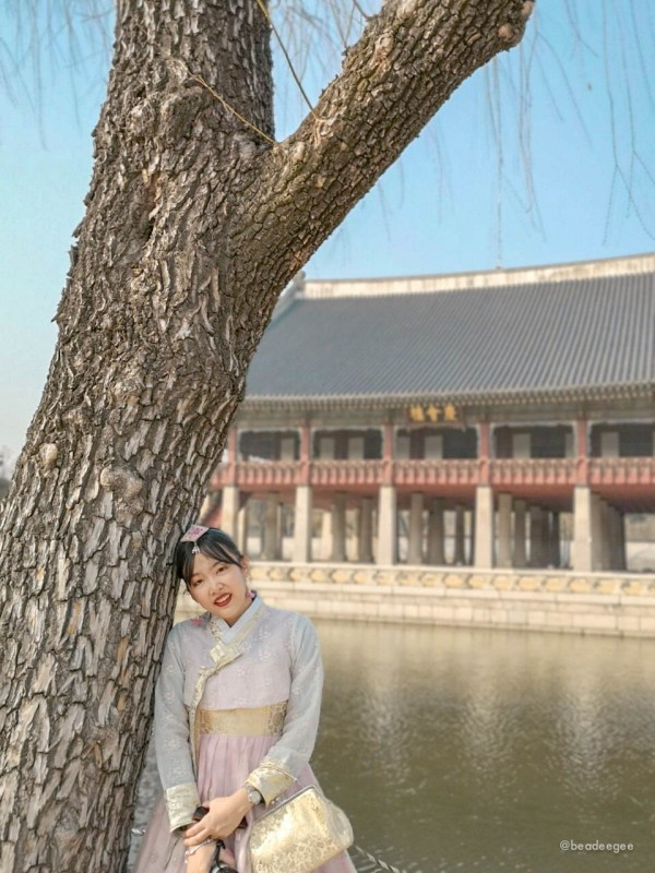 An Asian girl wearing a traditional Korean Hanbok leaning on a tree