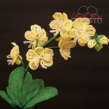 orchidcmyk300ppi